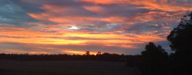 Sunrise-at-Olive-Hill-Farm-Margaret-River