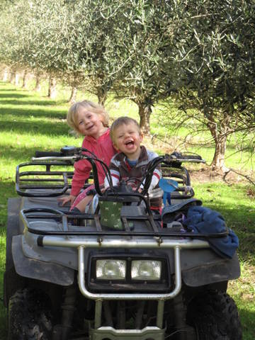 family-enjoyin-the-olive-grove-and-quad