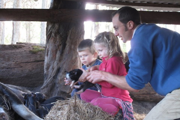 emma-and-jack-carefully-handling-the-piglets-at-olive-hill-farm