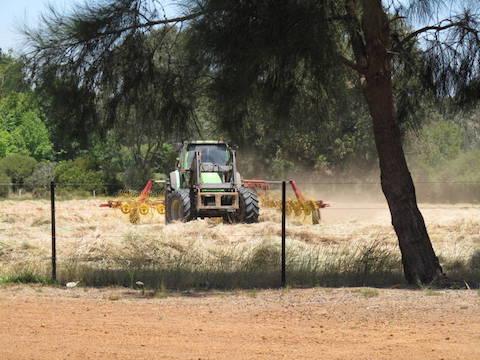 farming-at-olive-hill-farm