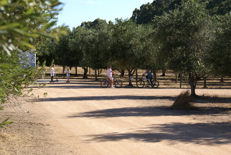Family & Pet Friendly campground Margaret River