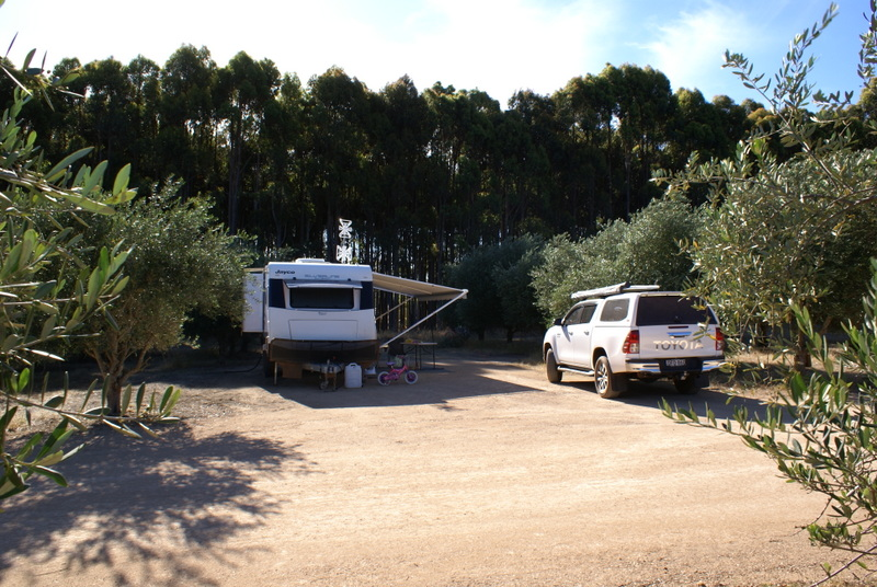 Large camping bays - hard standing of 6x18m or 7x15m