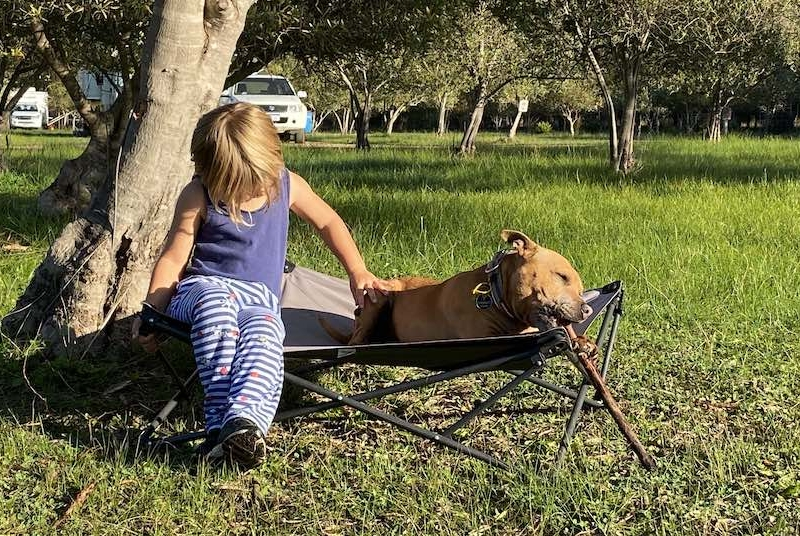 Pet Friendly campground margaret river olive hill farm